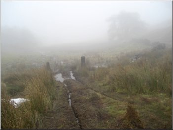 A misty Northumbrian moor